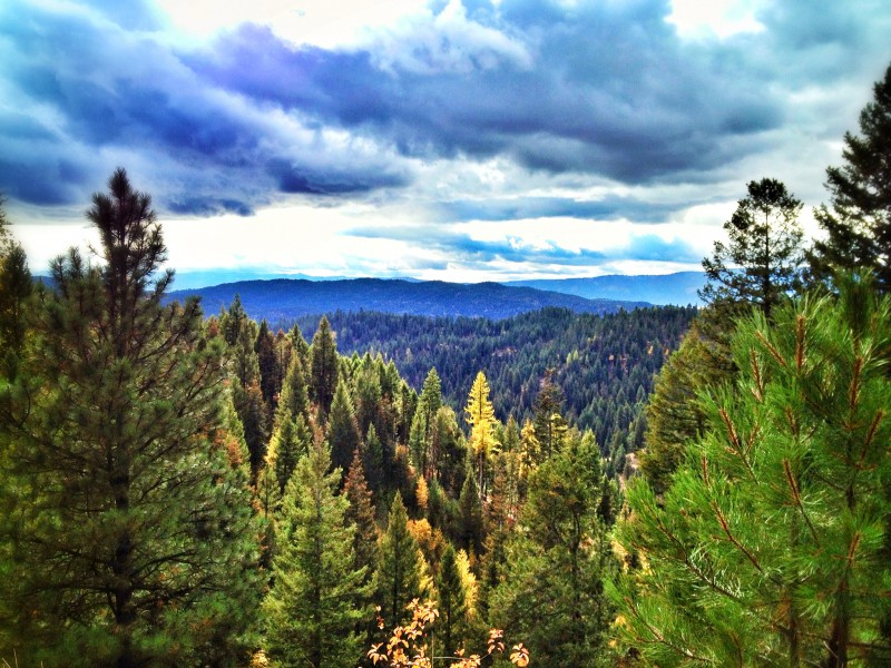 Real Estate in McCall, Idaho